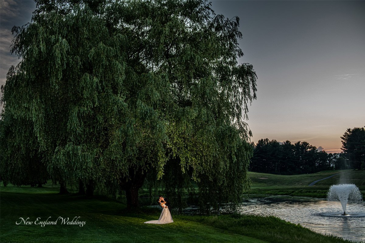 The International Wedding Willow Tree Night Shot