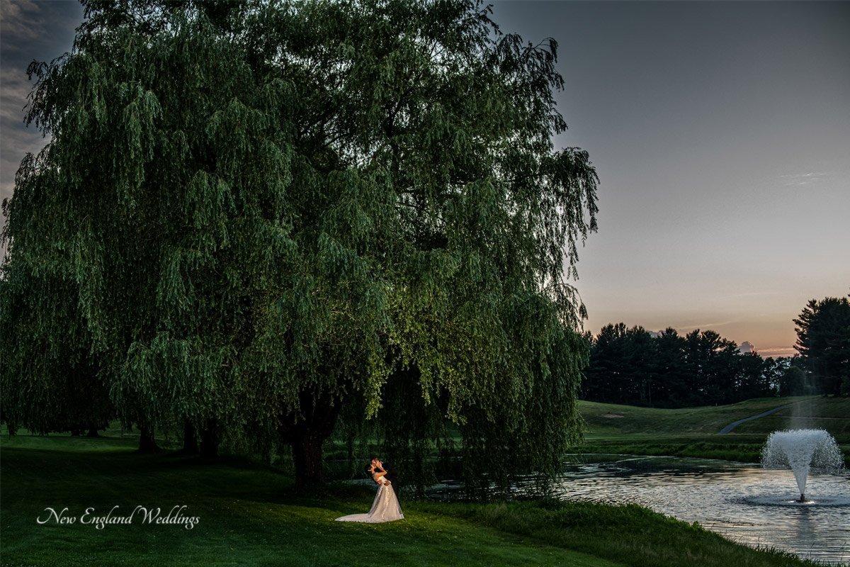 The International Wedding Willow Tree Night Shot